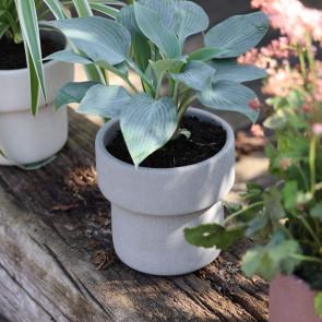 SACKit - Flowerpot 100